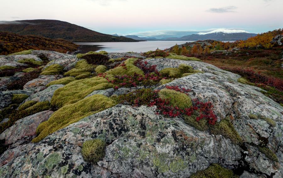 Norra 2013